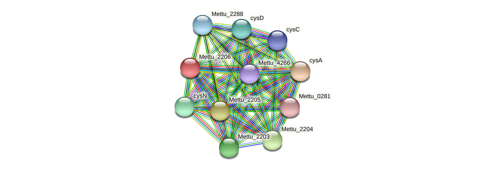 Mettu_2206 protein (Methylobacter tundripaludum) - STRING interaction network