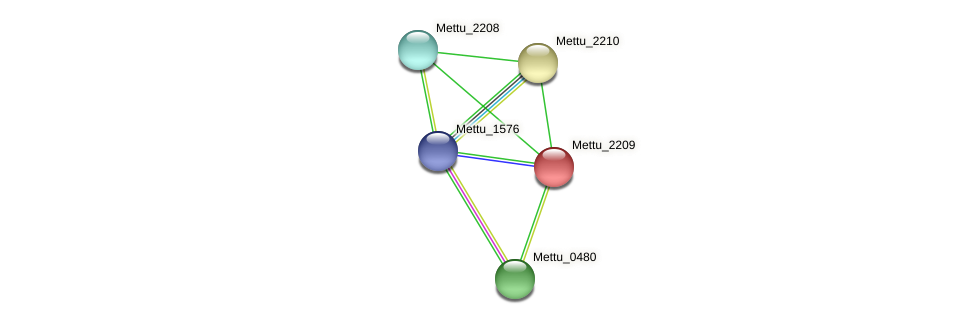 Mettu_2209 protein (Methylobacter tundripaludum) - STRING interaction network