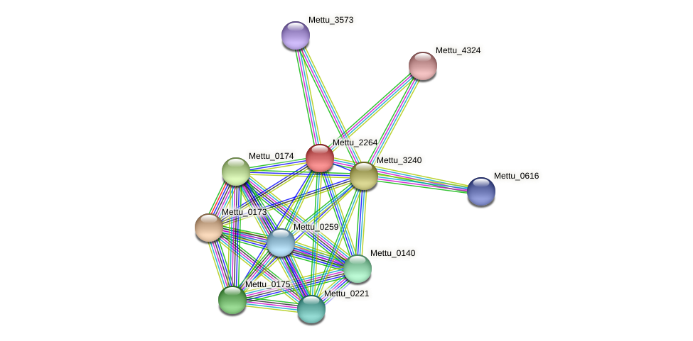 Mettu_2264 protein (Methylobacter tundripaludum) - STRING interaction network