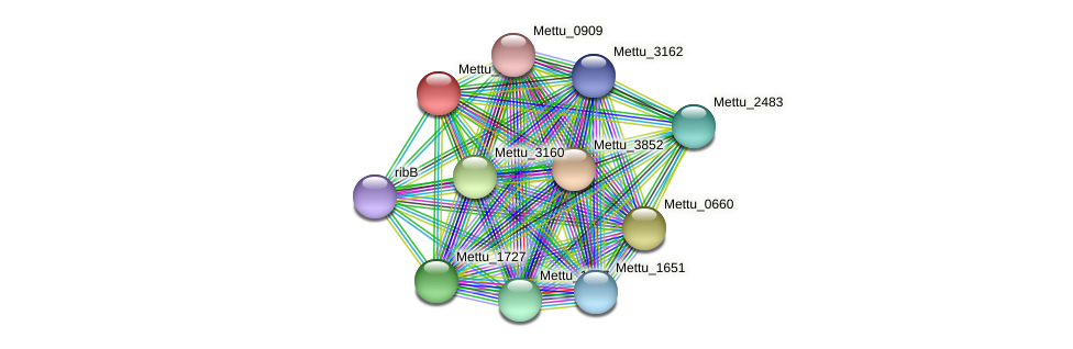 Mettu_2266 protein (Methylobacter tundripaludum) - STRING interaction network