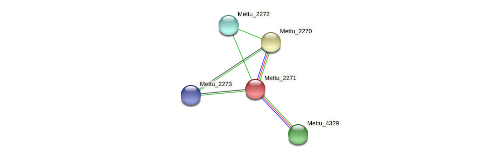 Mettu_2271 protein (Methylobacter tundripaludum) - STRING interaction network