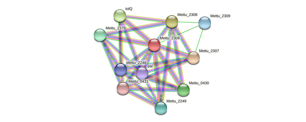 Mettu_2306 protein (Methylobacter tundripaludum) - STRING interaction network