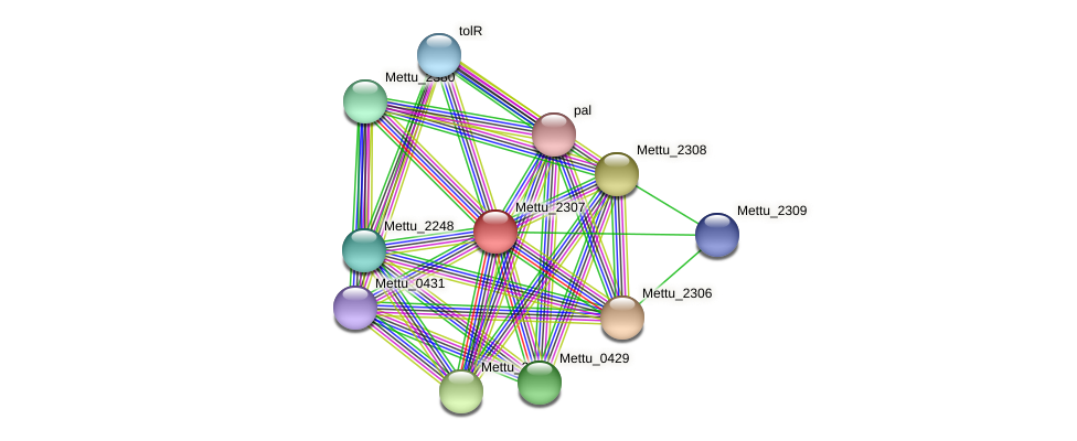 Mettu_2307 protein (Methylobacter tundripaludum) - STRING interaction network