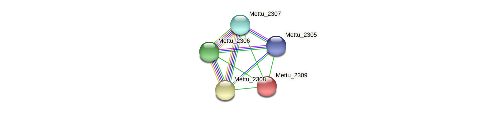 Mettu_2309 protein (Methylobacter tundripaludum) - STRING interaction network