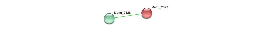 Mettu_2327 protein (Methylobacter tundripaludum) - STRING interaction network