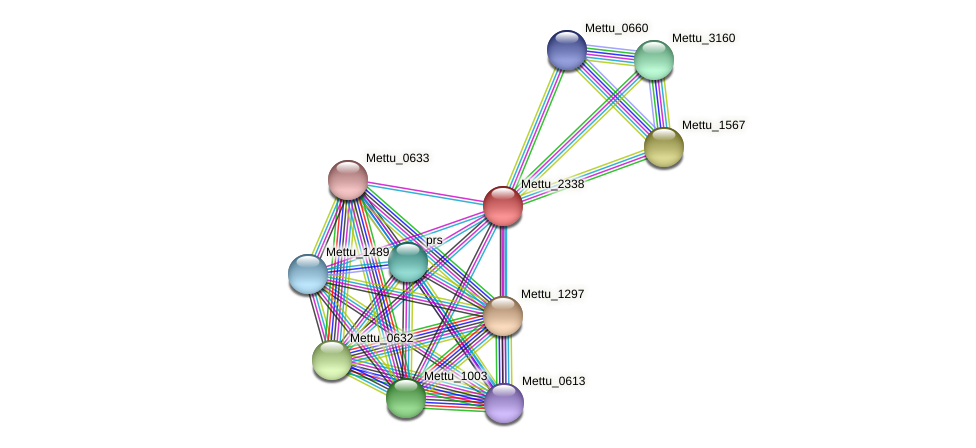 Mettu_2338 protein (Methylobacter tundripaludum) - STRING interaction network