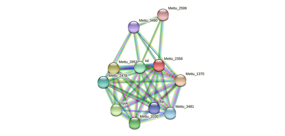 Mettu_2358 protein (Methylobacter tundripaludum) - STRING interaction network