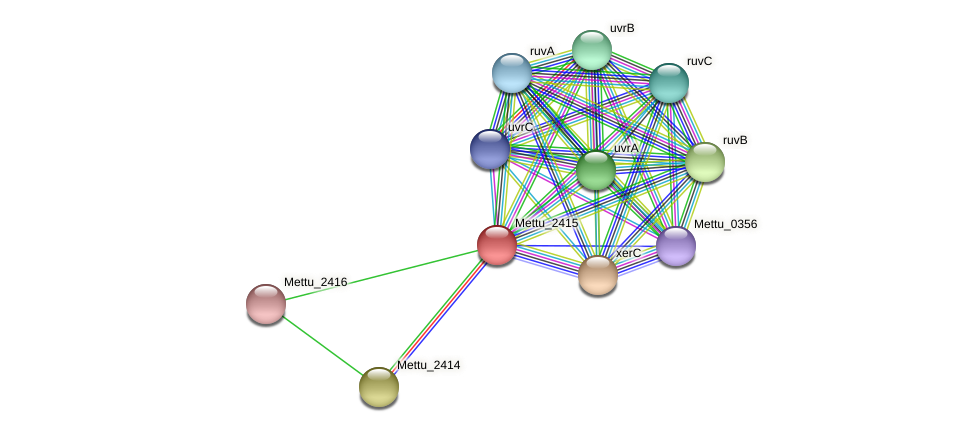 Mettu_2415 protein (Methylobacter tundripaludum) - STRING interaction network