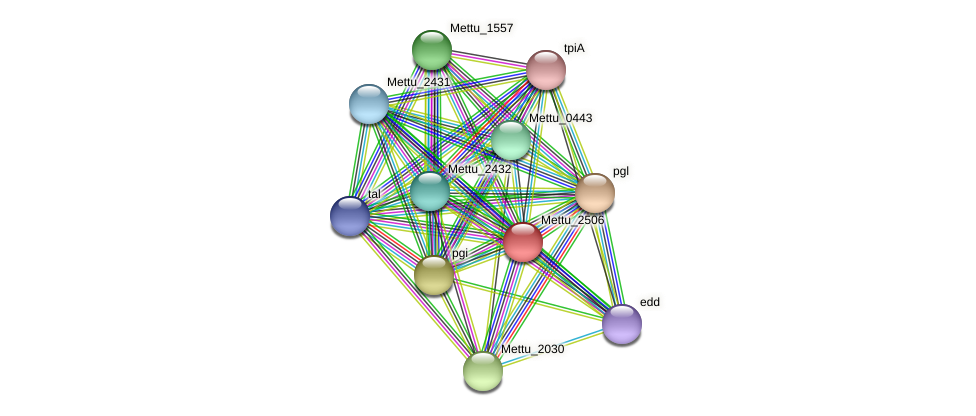 Mettu_2506 protein (Methylobacter tundripaludum) - STRING interaction network