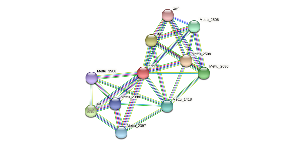 Mettu_2507 protein (Methylobacter tundripaludum) - STRING interaction network