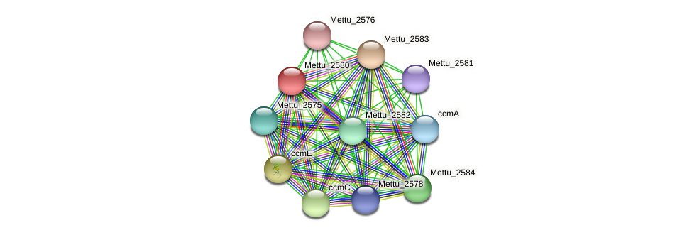 Mettu_2580 protein (Methylobacter tundripaludum) - STRING interaction network