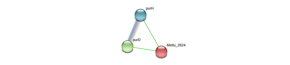 Mettu_2624 protein (Methylobacter tundripaludum) - STRING interaction network