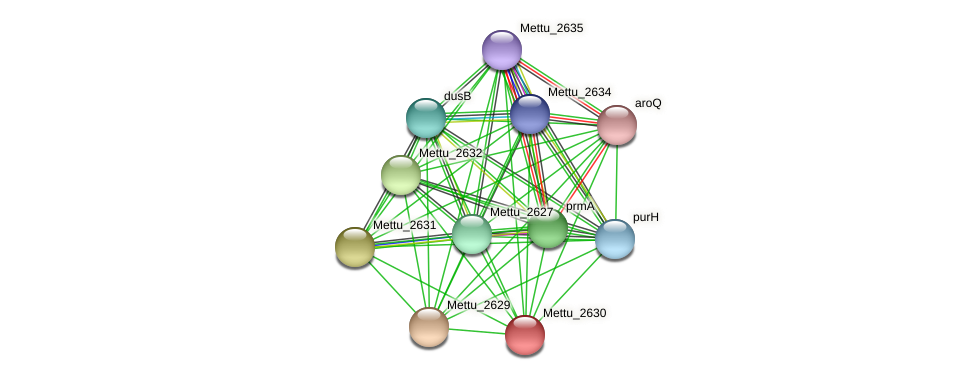 Mettu_2630 protein (Methylobacter tundripaludum) - STRING interaction network