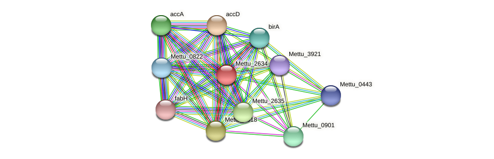 Mettu_2634 protein (Methylobacter tundripaludum) - STRING interaction network