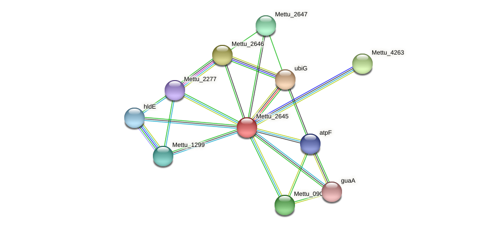 Mettu_2645 protein (Methylobacter tundripaludum) - STRING interaction network