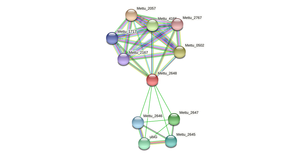 Mettu_2648 protein (Methylobacter tundripaludum) - STRING interaction network