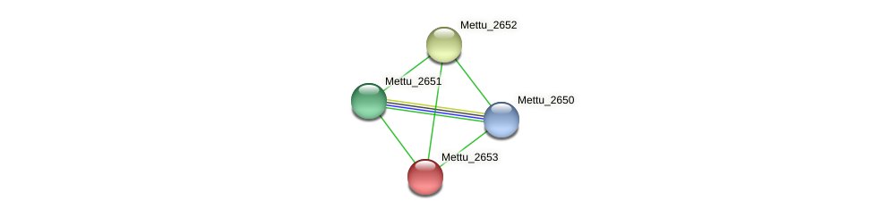 Mettu_2653 protein (Methylobacter tundripaludum) - STRING interaction network