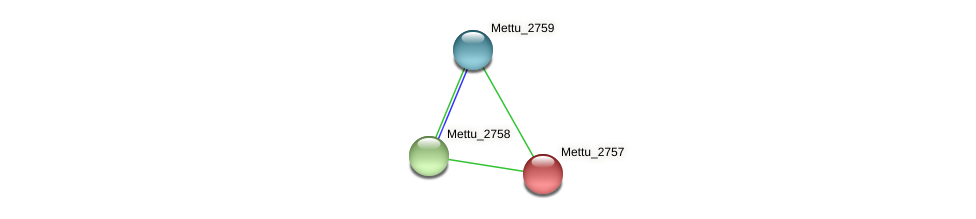 Mettu_2757 protein (Methylobacter tundripaludum) - STRING interaction network