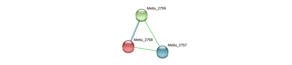 Mettu_2758 protein (Methylobacter tundripaludum) - STRING interaction network