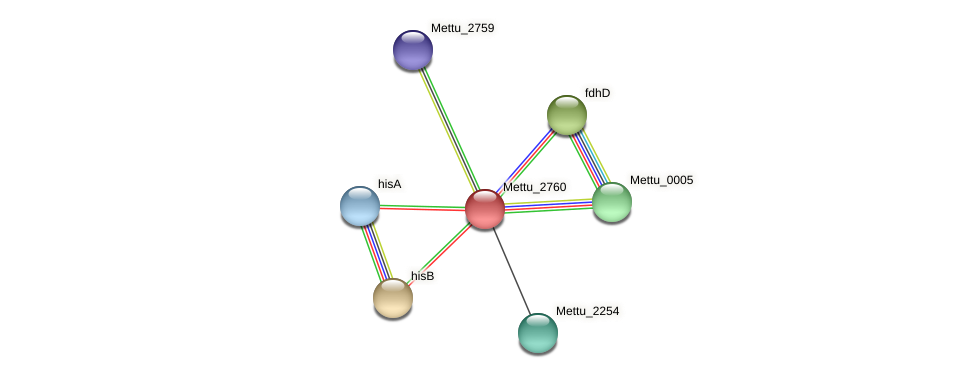 Mettu_2760 protein (Methylobacter tundripaludum) - STRING interaction network