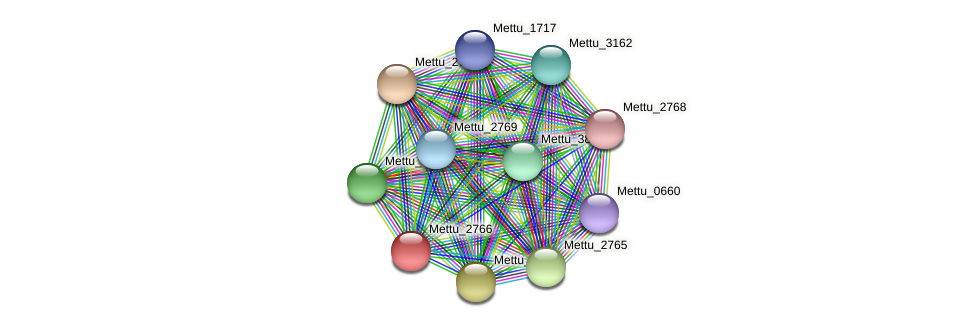 Mettu_2766 protein (Methylobacter tundripaludum) - STRING interaction network