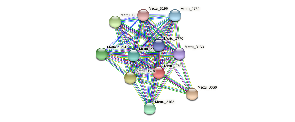 Mettu_2767 protein (Methylobacter tundripaludum) - STRING interaction network