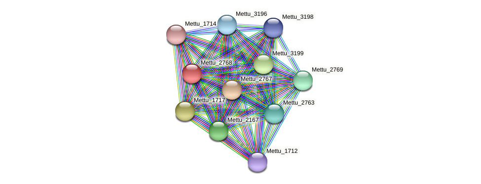 Mettu_2768 protein (Methylobacter tundripaludum) - STRING interaction network