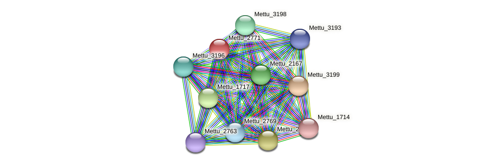 Mettu_2771 protein (Methylobacter tundripaludum) - STRING interaction network