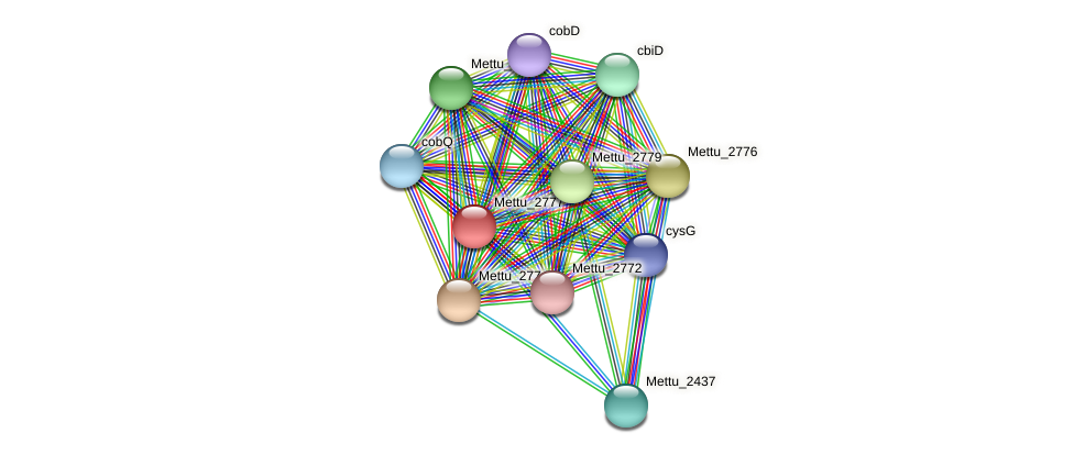 Mettu_2777 protein (Methylobacter tundripaludum) - STRING interaction network