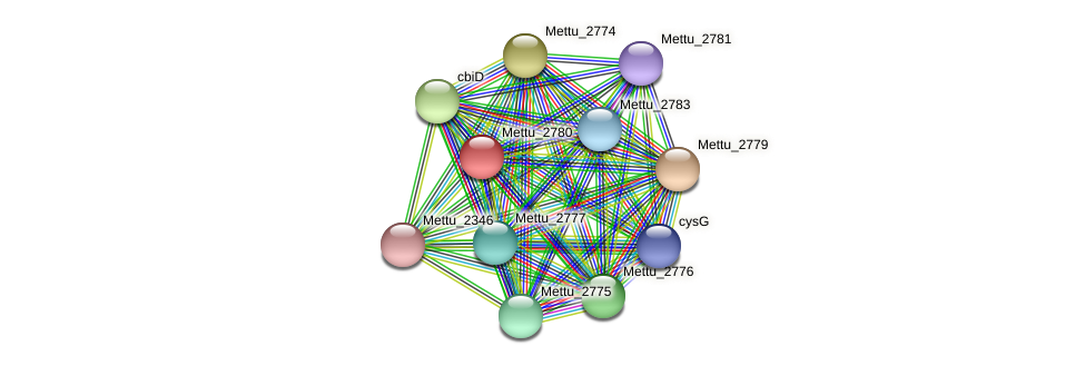 Mettu_2780 protein (Methylobacter tundripaludum) - STRING interaction network