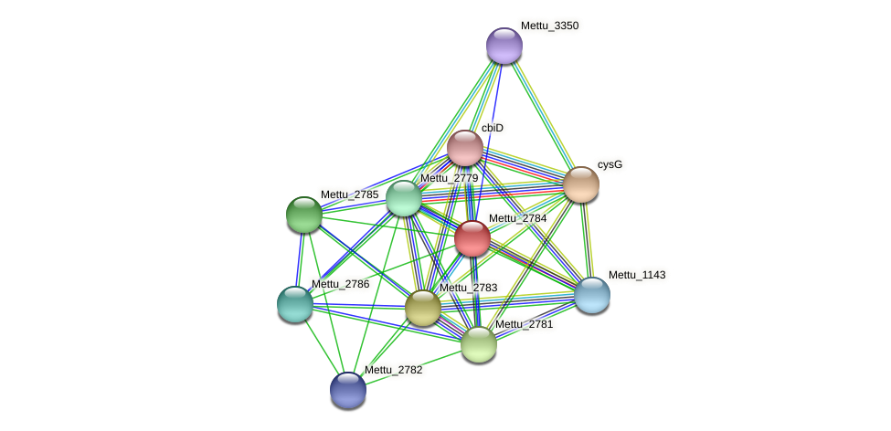 Mettu_2784 protein (Methylobacter tundripaludum) - STRING interaction network