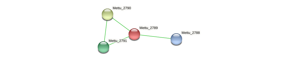 Mettu_2789 protein (Methylobacter tundripaludum) - STRING interaction network