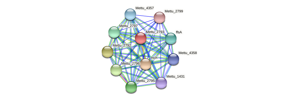 Mettu_2793 protein (Methylobacter tundripaludum) - STRING interaction network