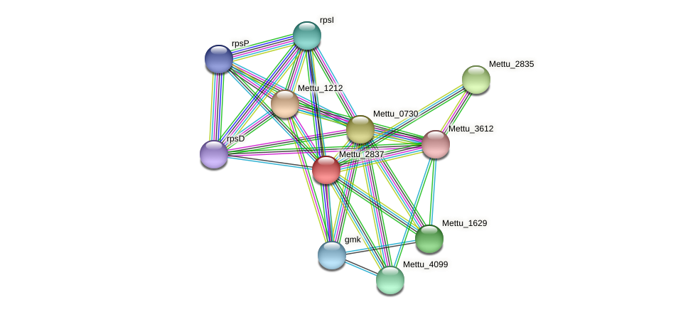 Mettu_2837 protein (Methylobacter tundripaludum) - STRING interaction network