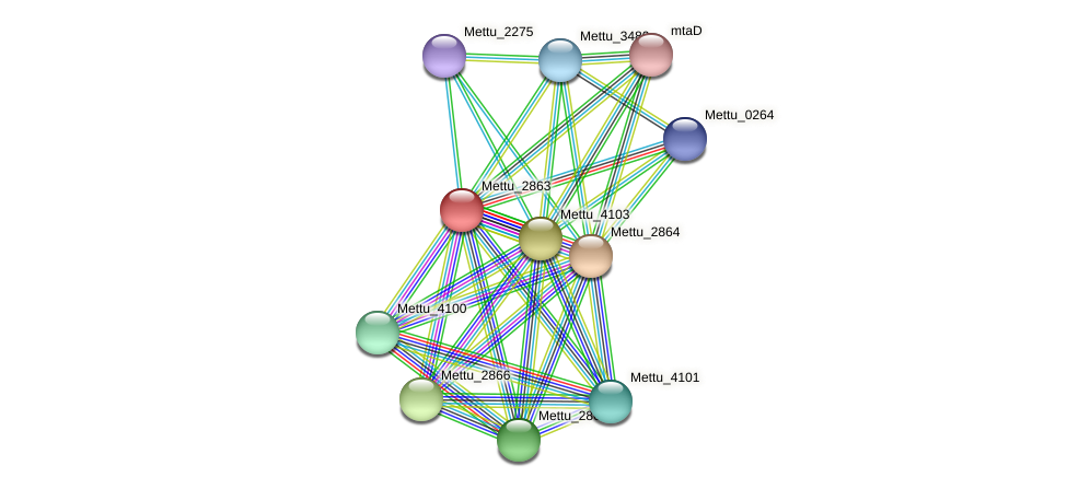 Mettu_2863 protein (Methylobacter tundripaludum) - STRING interaction network