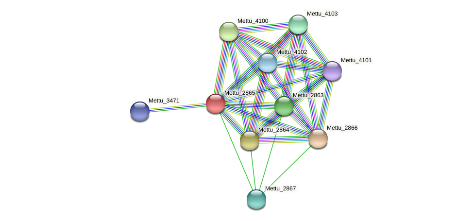 Mettu_2865 protein (Methylobacter tundripaludum) - STRING interaction network