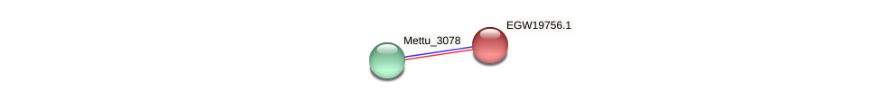 Mettu_2868 protein (Methylobacter tundripaludum) - STRING interaction network