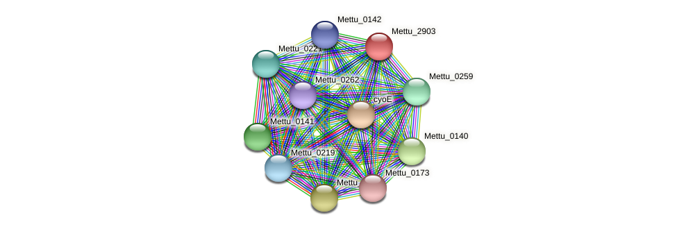 Mettu_2903 protein (Methylobacter tundripaludum) - STRING interaction network