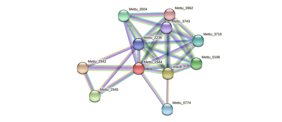 Mettu_2944 protein (Methylobacter tundripaludum) - STRING interaction network