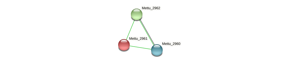 Mettu_2961 protein (Methylobacter tundripaludum) - STRING interaction network