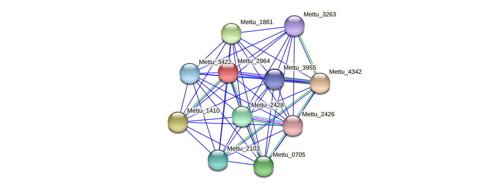 Mettu_2964 protein (Methylobacter tundripaludum) - STRING interaction network