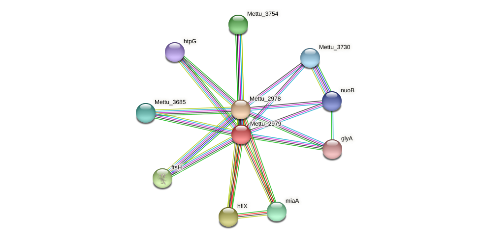 Mettu_2979 protein (Methylobacter tundripaludum) - STRING interaction network