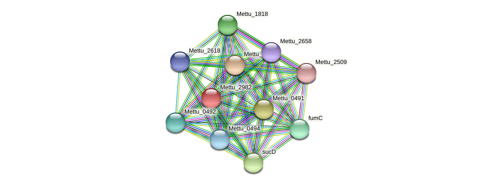 Mettu_2982 protein (Methylobacter tundripaludum) - STRING interaction network