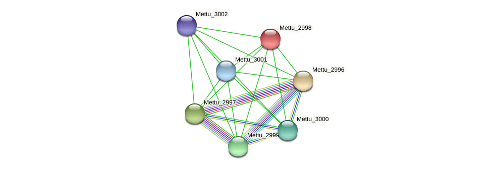 Mettu_2998 protein (Methylobacter tundripaludum) - STRING interaction network