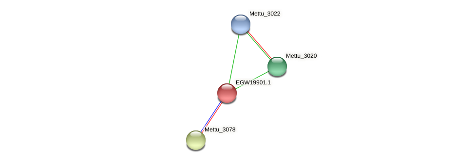 Mettu_3021 protein (Methylobacter tundripaludum) - STRING interaction network