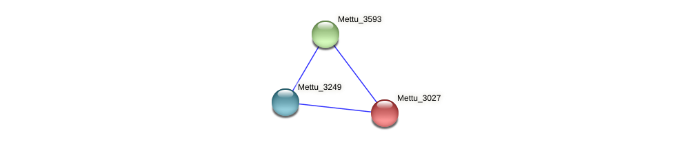 Mettu_3027 protein (Methylobacter tundripaludum) - STRING interaction network