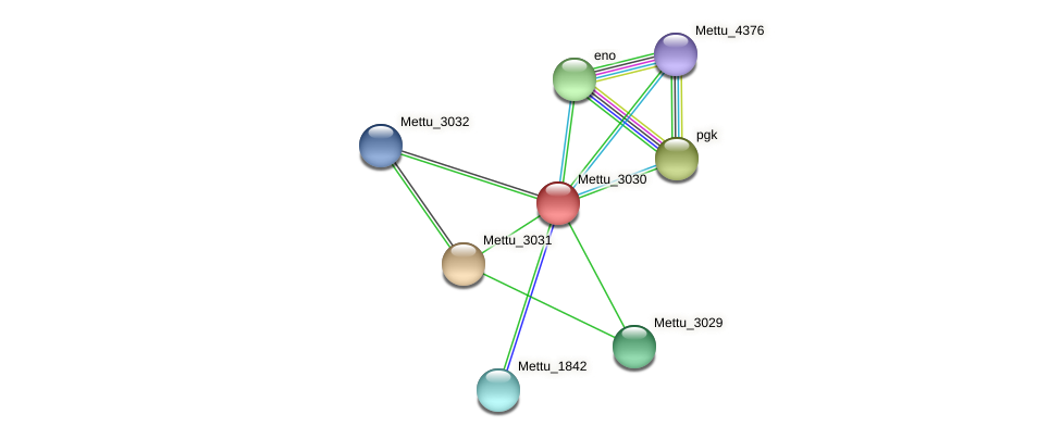 Mettu_3030 protein (Methylobacter tundripaludum) - STRING interaction network