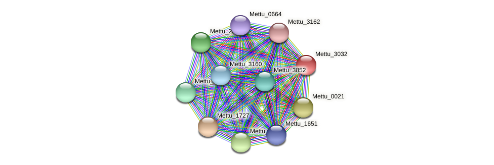 Mettu_3032 protein (Methylobacter tundripaludum) - STRING interaction network