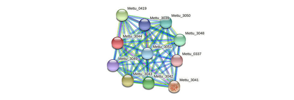 Mettu_3044 protein (Methylobacter tundripaludum) - STRING interaction network