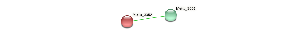 Mettu_3052 protein (Methylobacter tundripaludum) - STRING interaction network